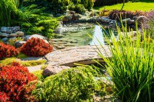 aménagement paysager avec plantes et fleurs