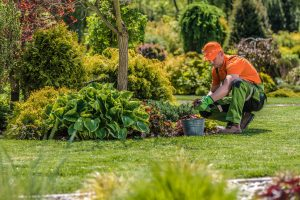 Travailleur professionnel de jardin